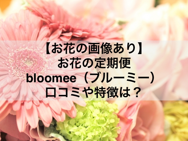 bloomee-photo